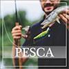 Consumo de peixe cresce duas vezes mais que o índice populaciona